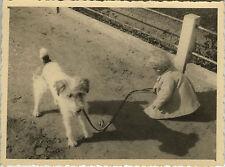 PHOTO ANCIENNE - VINTAGE SNAPSHOT - ANIMAL CHIEN ENFANT OMBRE - DOG CHILD SHADOW