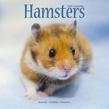 Hamsters 2021 Calendar 15% Off Multi Orders!