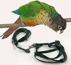 Crown Adjustable Parrot Bird Harness Leash Multicolor Light Soft Fashion