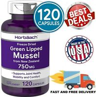 GREEN LIPPED MUSSEL 750 mg Supports Joint Health Mobility Comfort 120 Capsules