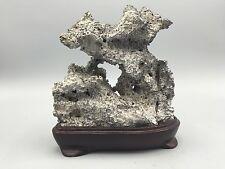 Natural polished Viewing stone suiseki-scholar rock Ying stone Super Hollow