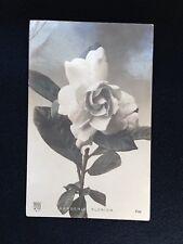 A505 1906 fiori Gardenia formato piccolo viaggiata da Roma