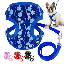 Cat Dog Harness & Leads Adjustable Mesh Padded Sequins for Pets French Bulldog