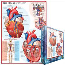 eg60000257 - Eurographics Puzzle 1000 pezzi - Il cuore
