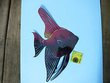 NEXT INNOVATIONS-Tranquil Tetra Fish Wall Art Decor-Indoor or Out-New