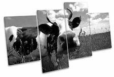 Animals Framed Decorative Posters & Prints