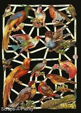 German Victorian Style  Embossed Scrap Die Cut - Colorful Long Tail Birds EF7246