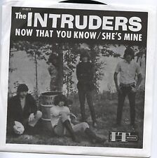 "The INTRUDERS Now That You Know / She's Mine 7"" IT Records MCCM back from grave"