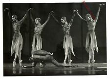 Royal Ballet ? Photo  (1970/80's) 8 x 10