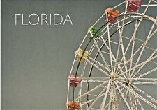 Colorful Ferris Wheel in Florida (Big Wheel, Observation Wheel, Giant Wheel)