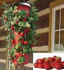 Erdbeer-Pflanzbeutel, 2 Stck., Pflanzampel, Erdbeersack, Pflanzgefäß