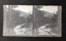 Stereo-View Stereoscopic Photo: New Zealand Graphic #A12: Wairoa Gorge, Nelson