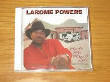 What's Life Without Love * by Larome Powers (CD, May-2006, Waldoxy Records)