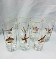 7 Vintage 16 oz Old Fashion Bar High Ball Glass Hand Painted Enamel Game Birds