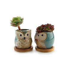 T4U Owl Succulent Cactus Planter Pot Set with Bamboo Tray Set of 2