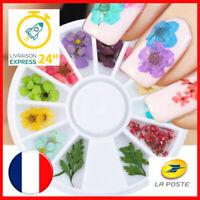 💅 24 pcs Nail Art Fleurs Floral Séché - Manucure Ongles