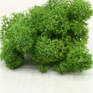 Artificial Fake Flower Moss Gras Green Plant Immortal Home Wall Room Decoration