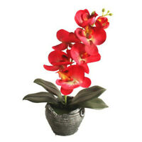 Artificial Flower Bonsai Simulated Plants Butterfly Orchid Flower Pot Home Decor