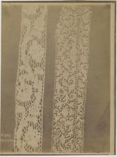 France, Musée de Cluny, Dentelles  Vintage albumen print Tirage albuminé  22