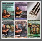 Art Supplies Michael Lang Painting Instruction 5 DVD set plus 3 M.Lang Brush set