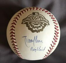 "Randy Johnson Autographed 2001 World Series Baseball ""Big Unit"" CLEAN BALL!!!"