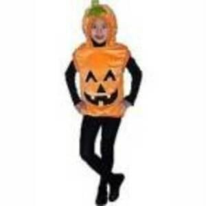 Toddler Girls Orange Hooded Pumpkin Plush Vest Halloween Costume-size 2/4