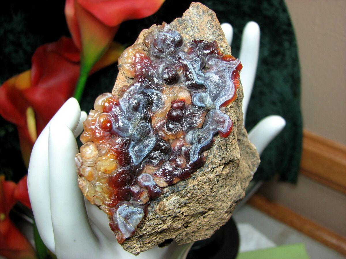 fossiltreasures