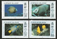 Cayman Islands 1990 Angelfishes set of 4 Mint Unhinged