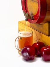Apple Cider Soap / Candle Making Fragrance Oil 1-16 Ounce *Free Shipping*