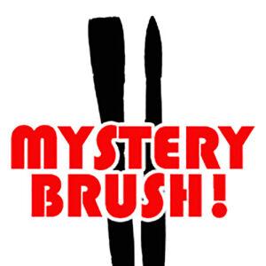 Mystery Artist Brush Worth $25 NOW JUST $5.