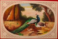 Hand Painted Peacock Bird Animal Miniature Painting India Art WildLife