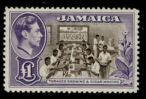 JAMAICA SG133a, £1 chocolate and violet, NH MINT. Cat £60.