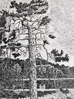P.(Philipp-?) Gosset - großer antiker Holzschnitt 18??: DIE ALTE KIEFER / am See