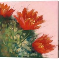 Blooming Succulent IV by Carol Rowan, Canvas Wall Art