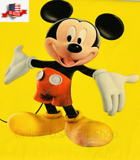 Disney Youth / Kids Mickey Mouse Club House Poncho