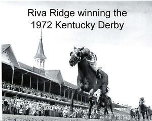 "1972 - RIVA RIDGE winning the Kentucky Derby - Ground Levcel Photo - 10"" x 8"""