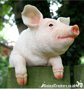 Novelty Fence Hanging Pig ornament sculpture figurine decoration Pig lover gift