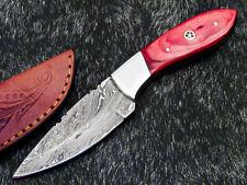 "Skinning Knife - Full Tang Damascus Steel Blade 8"" - HARD WOOD HANDLE- WD-8541"