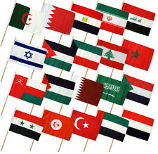 "12x18 12""x18"" Set of 20 Middle Eastern Countries Stick Flag wood Staff"