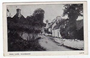 WALES, LLANMADOC, FROG LANE, 1906
