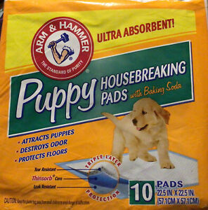 ARM & HAMMER ULTRA ABSORBENT PUPPY HOUSEBREAKING RIP PROOF PADS 10 COUNT BAG