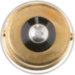 Lamp Assy Sidemarker  Philips  67CP
