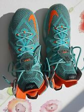 Nike LeBron James 12 NSRL EU47/US 12,5 gebraucht