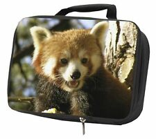 Red Panda Bear Black Insulated School Lunch Box Bag, ARP-1LBB