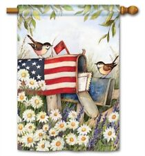 Patriotic Mailbox Flag 2 Sided Decorative House Banner ~ Artist, Susan Winget