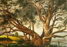 Alfred Sharpe, Pohutukawa 1876, Large New Zealand Art from Auckland.