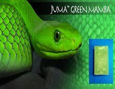 """1 Green Mamba Juma Exotic Vape Mod Box Block 3"""" x 2"""" x 6"""" Game Call Block"""