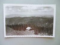 Ansichtskarte Feldberg Schwarzwald Blick auf Naturfreundehaus am Baldenwegerbuck