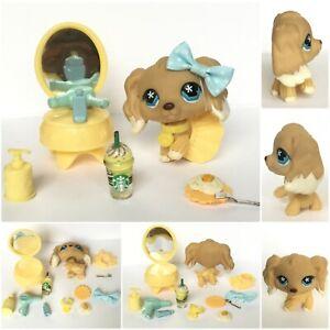 Littlest Pet Shop Spaniel Dog #748 Tan Cream Blue Flower AUTHENTIC + Accessories