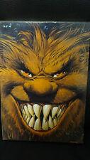 BD - Coffret Trolls de Troy - 4 volumes - TBE - Arleston
